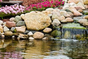 pond and water feature supply in colorado at wholesale costs from CPS distributors