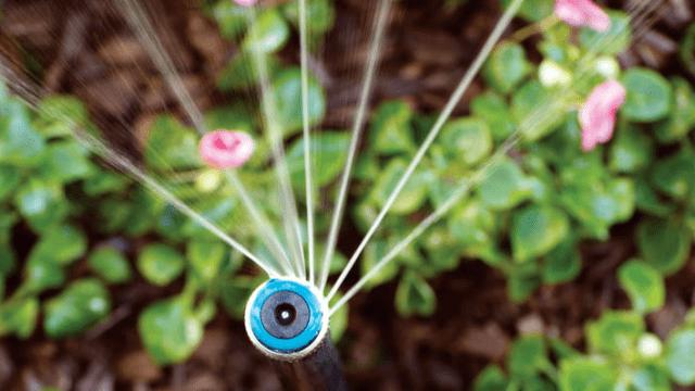 Hunter MP Rotator Smart Irrigation